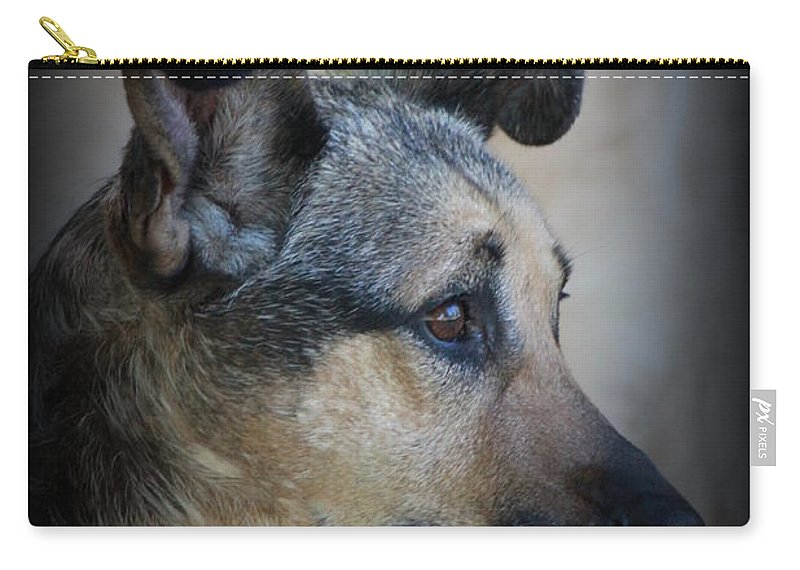 Dog Carry-all Pouch featuring the photograph Portrait Of Kylie by Jennifer E Doll