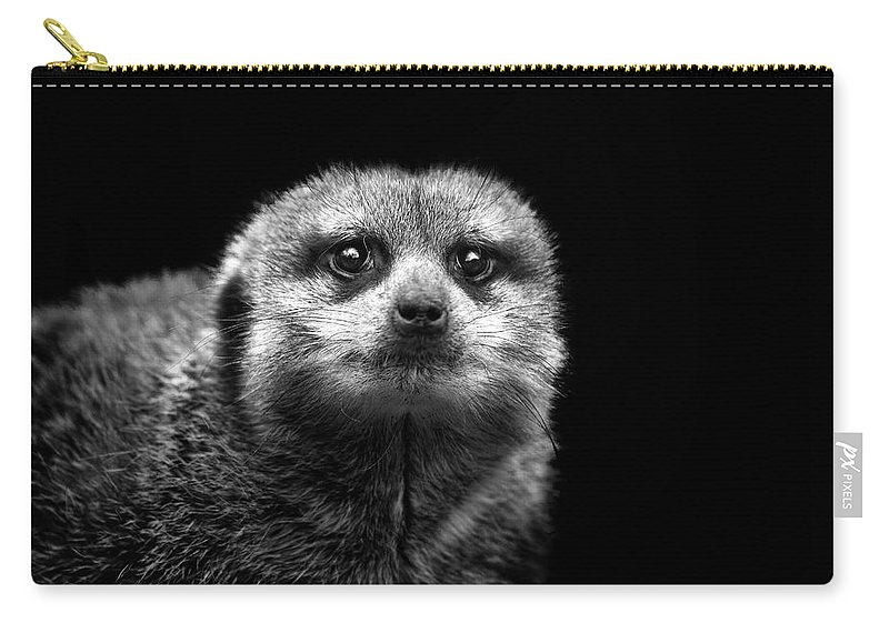 Alertness Carry-all Pouch featuring the photograph Portrait Of Meerkat by Malcolm Macgregor