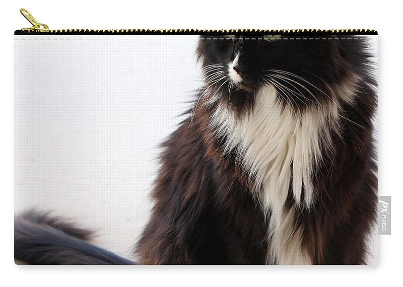 B And W Carry-all Pouch featuring the photograph Portrait Of Waffles by Jennifer E Doll