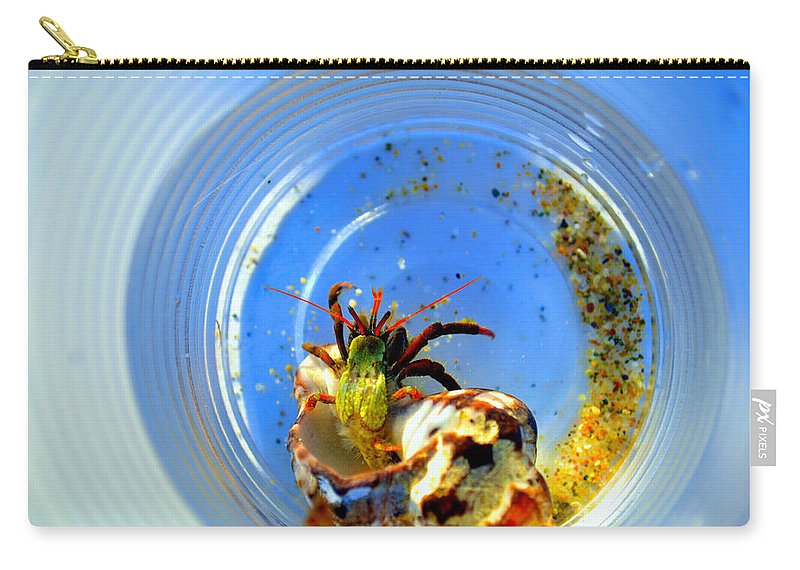 Shellfish Carry-all Pouch featuring the photograph Posing Before Release by Zafer Gurel