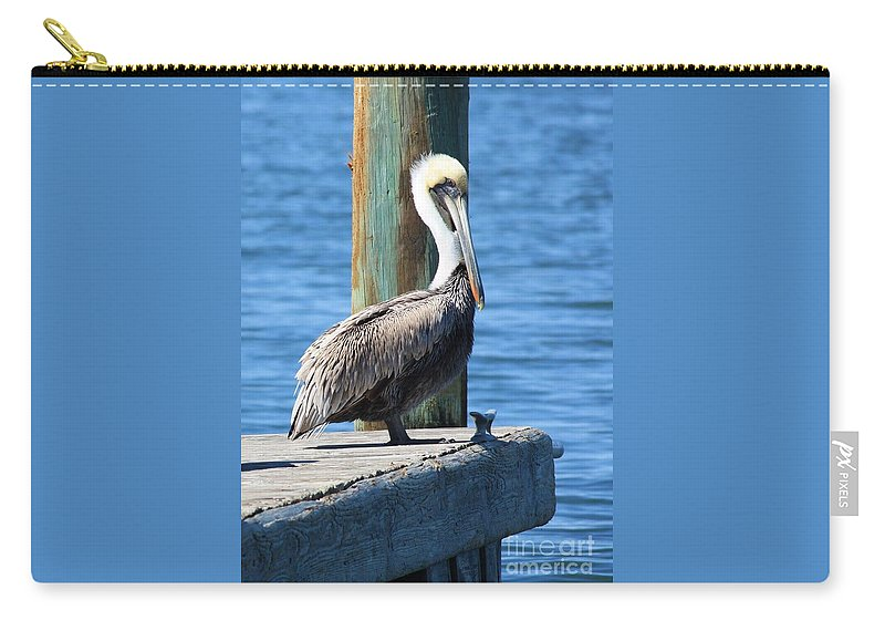 Animal Carry-all Pouch featuring the photograph Posing Pelican by Carol Groenen