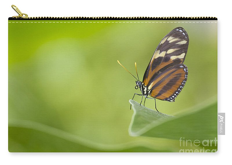 Butterfly Carry-all Pouch featuring the photograph Postman On A Leaf by Bryan Keil