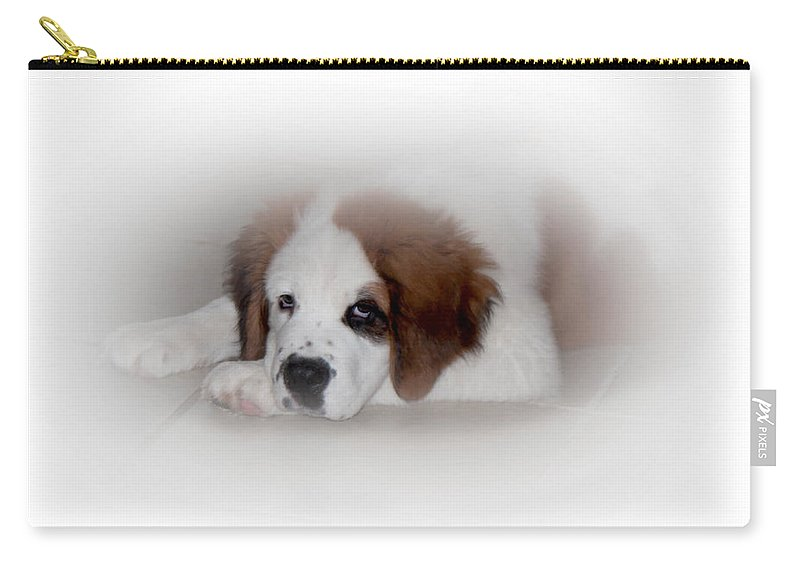 Pouting Pup Carry-all Pouch featuring the photograph Pouting Pup by Mechala Matthews