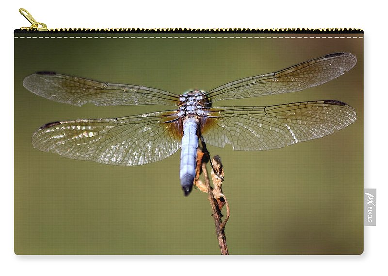 Dragonfly Carry-all Pouch featuring the photograph Powder Blue by Kenny Glotfelty