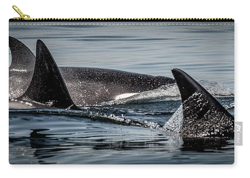Orca Carry-all Pouch featuring the photograph Power Pod II by Roxy Hurtubise