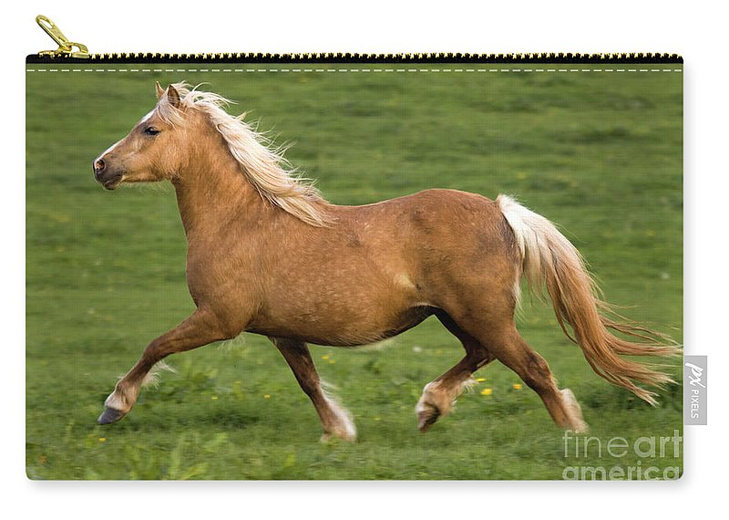 Pony Carry-all Pouch featuring the photograph Prancing Pony by Angel Ciesniarska
