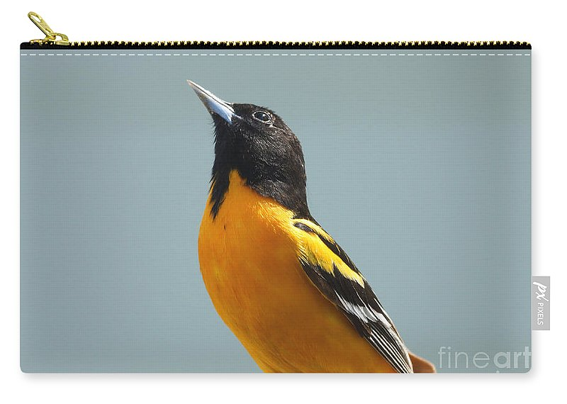 Oriole Carry-all Pouch featuring the photograph Praying For Some Jelly by Lori Tordsen