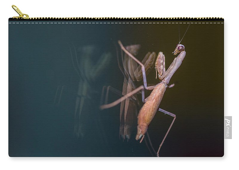 Praying Mantis Carry-all Pouch featuring the photograph Praying Mantis 1 by Angela Stanton