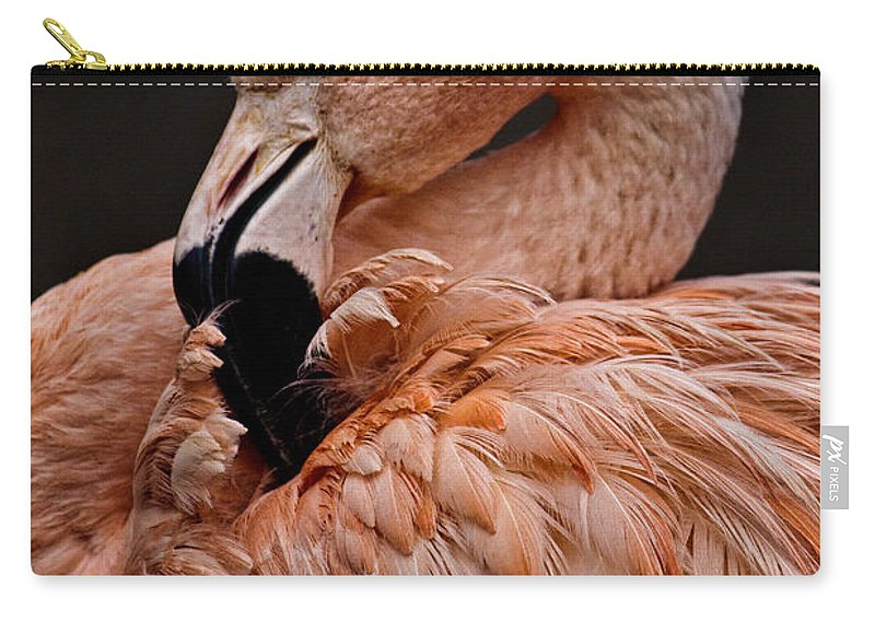 Preening Carry-all Pouch featuring the photograph Preening by Wes and Dotty Weber