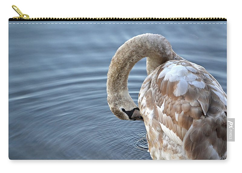 Swan Carry-all Pouch featuring the photograph Preening by Jatinkumar Thakkar