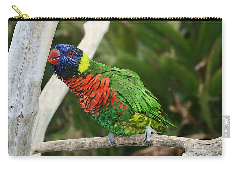 Pretty Bird Carry-all Pouch featuring the photograph Pretty Bird by Ellen Henneke