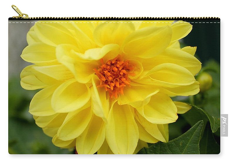 Yellow Carry-all Pouch featuring the photograph Pretty In Yellow by Nikki Vig