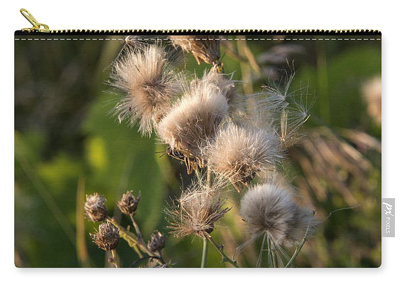 Thistle Carry-all Pouch featuring the photograph Prickly Beauty by Jayne Gohr