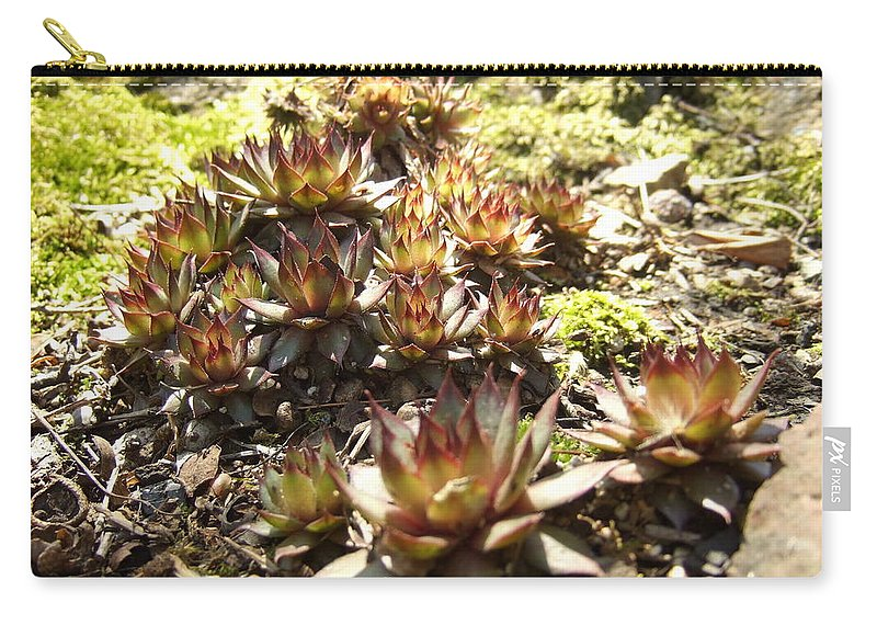 Carry-all Pouch featuring the photograph Prickly Lilies by Katerina Naumenko