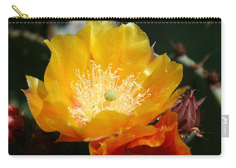 Prickly Pear Blossom Carry-all Pouch featuring the photograph Prickly Pear Blossom by Ellen Henneke