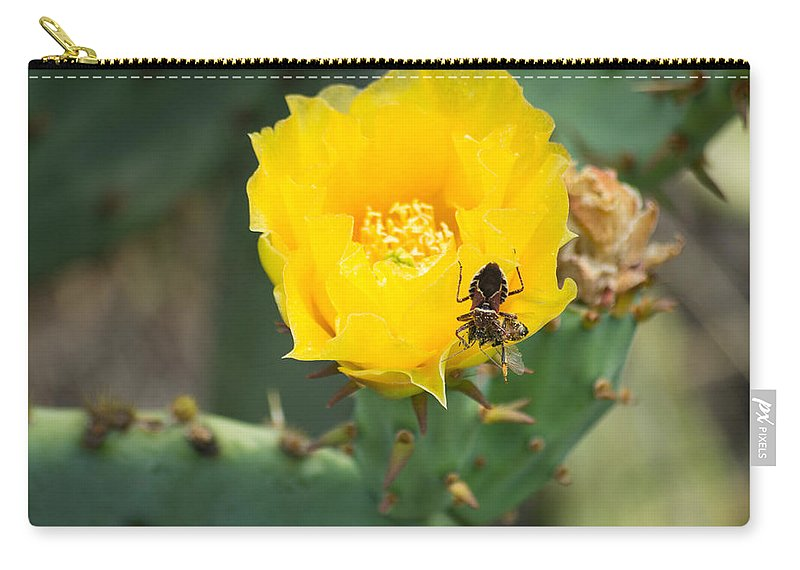 Texas Carry-all Pouch featuring the photograph Cedar Park Texas Prickly Pear Cactus In Flower by JG Thompson