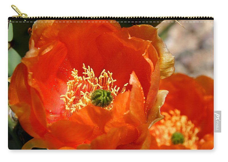 Cactus Carry-all Pouch featuring the photograph Prickly Pear In Bloom by Joe Kozlowski