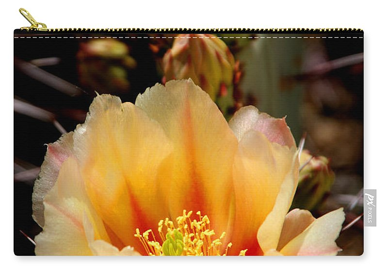Prickly Pear Carry-all Pouch featuring the photograph Prickly Pear by Joe Kozlowski