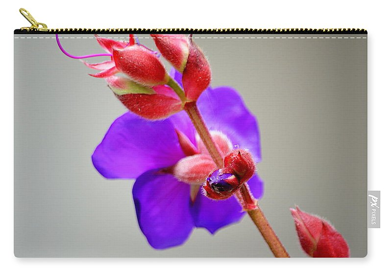 Flower Princess Bloom Red Violet Ayjay Photography Carry-all Pouch featuring the photograph Princess Flower Blooms by AJ Schibig