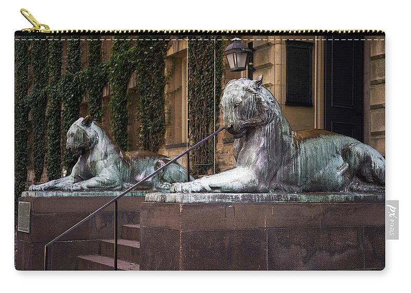 Princeton University Carry-all Pouch featuring the photograph Princeton Tigers by Madeline Ellis