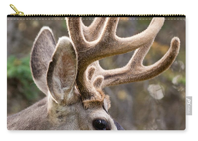 Adult Carry-all Pouch featuring the photograph Profile Of Mule Deer Buck With Velvet Antler by Stephan Pietzko