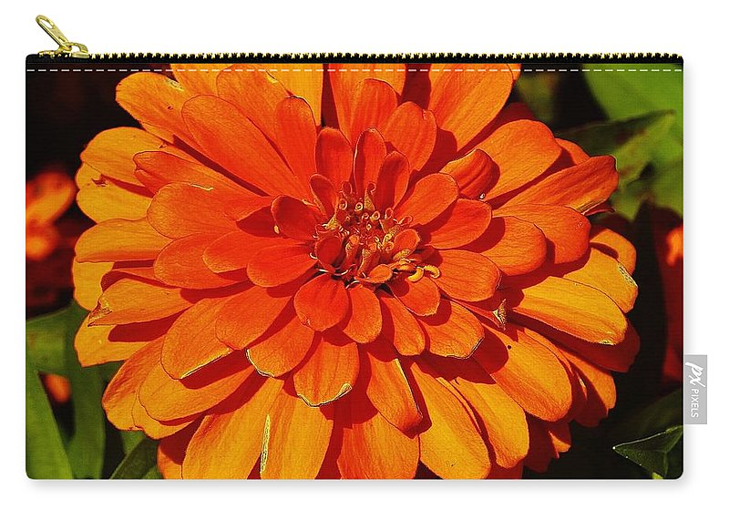 Carry-all Pouch featuring the photograph Proven Winners Flower by Daniel Thompson