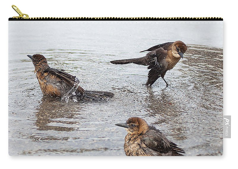 Crackle Carry-all Pouch featuring the photograph Public Bath by Barbara McMahon