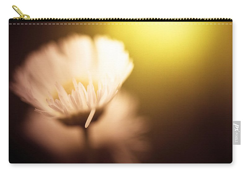 Light Carry-all Pouch featuring the photograph The Warmth Of The Sun by Shane Holsclaw