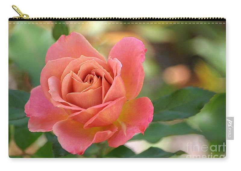 Rose Carry-all Pouch featuring the photograph Pumpkin Patch Rose by Living Color Photography Lorraine Lynch