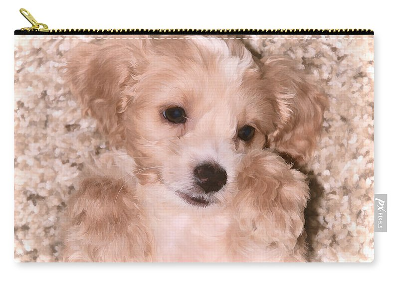 Cockerpoo Carry-all Pouch featuring the photograph Puppy Love by Athena Mckinzie