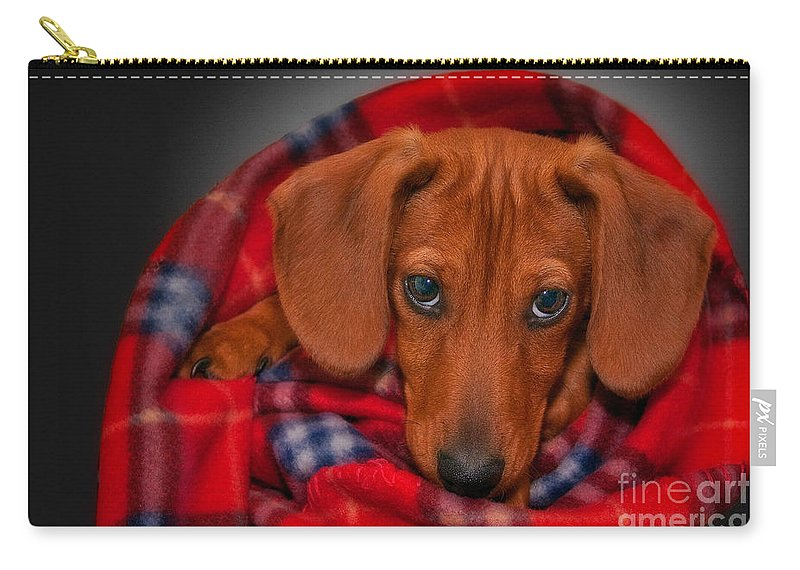 Puppy Carry-all Pouch featuring the photograph Puppy Love by Susan Candelario
