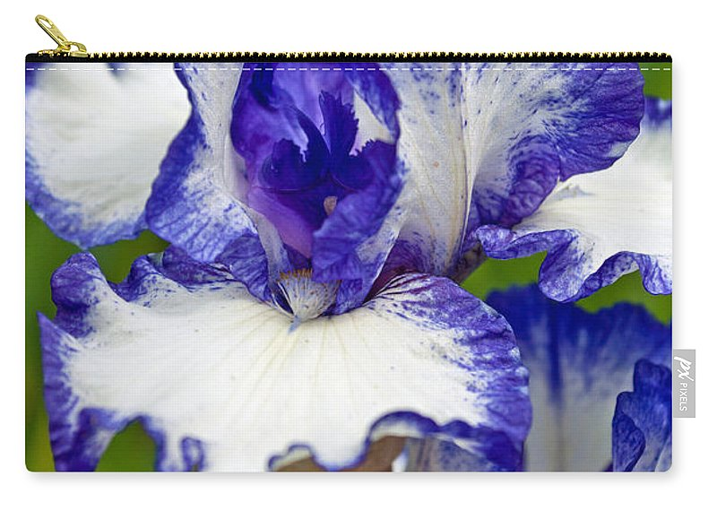 Purple And White Iris Carry-all Pouch featuring the photograph Purple And White Iris by Tikvah's Hope
