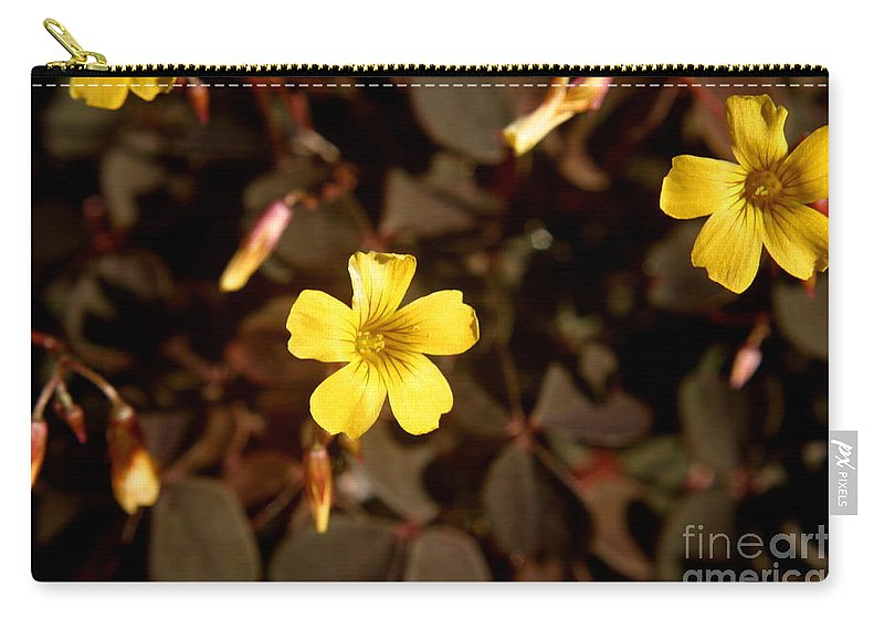 Purple clover yellow flower carry all pouch for sale by kenny glotfelty clover carry all pouch featuring the photograph purple clover yellow flower by kenny glotfelty mightylinksfo