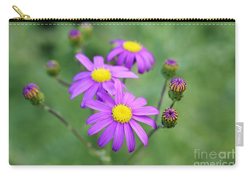 Felicia Filifolia Carry-all Pouch featuring the photograph Purple Daisy by Neil Overy