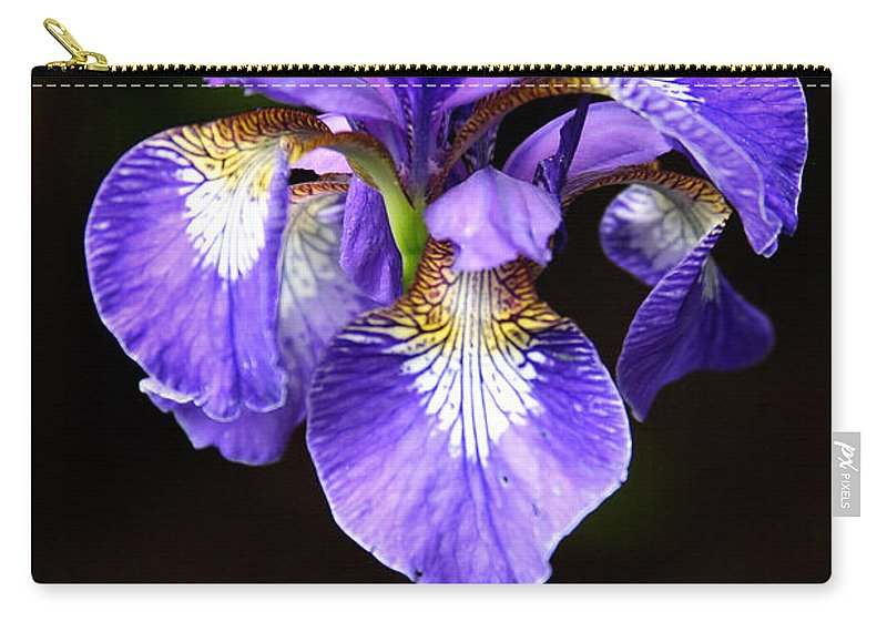 3scape Carry-all Pouch featuring the photograph Purple Iris by Adam Romanowicz