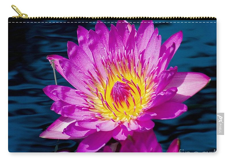 Aquatic Carry-all Pouch featuring the photograph Purple Lily On The Water by Nick Zelinsky