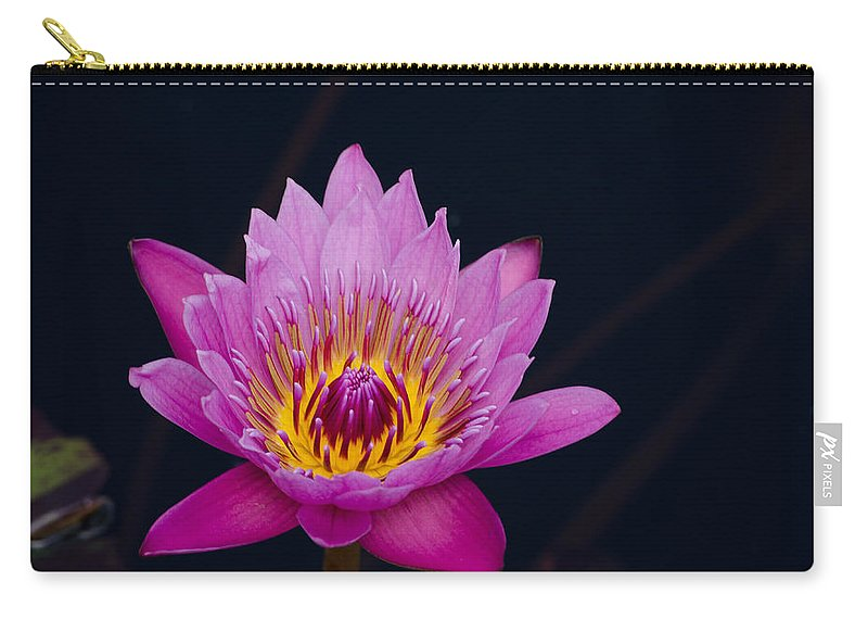 Flower Carry-all Pouch featuring the photograph Purple Lotus Flower by Jim Shackett