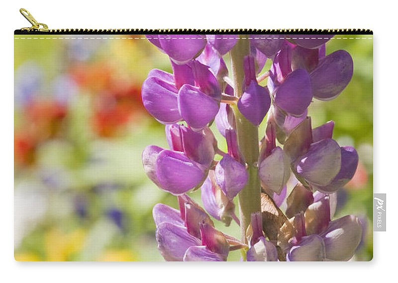Lupine Carry-all Pouch featuring the photograph Purple Lupine Flowers by Keith Webber Jr