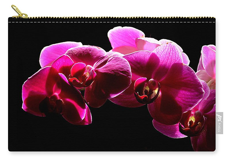 Orchid Carry-all Pouch featuring the photograph Purple Orchid by David Hohmann