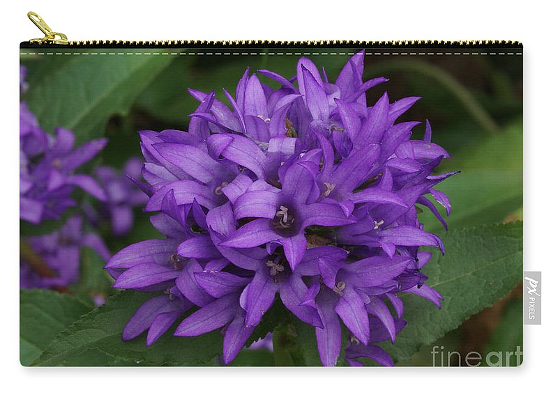 Purple Carry-all Pouch featuring the photograph Purple Pride by Lori Tordsen
