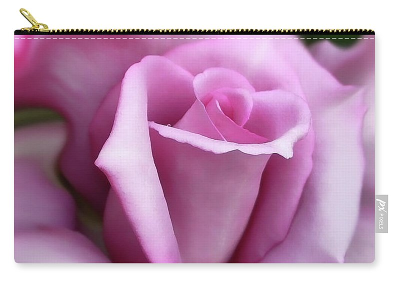 Rose Carry-all Pouch featuring the photograph Purple Rose Portrait by Jennie Marie Schell
