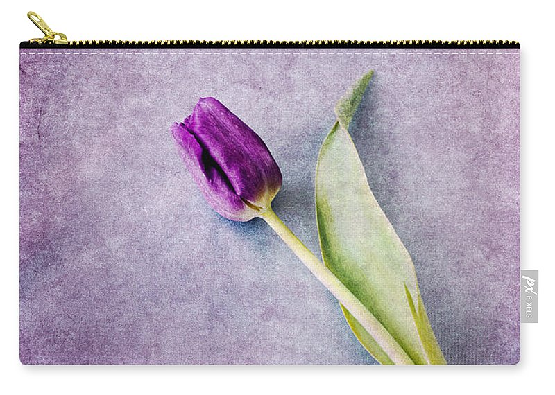 Tulips Carry-all Pouch featuring the photograph Purple Tulip by David Lichtneker