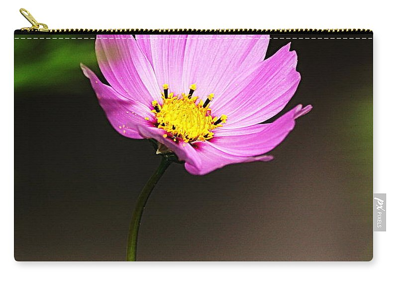 Wildflower Carry-all Pouch featuring the photograph Purple Wildflower by Paul Wilford