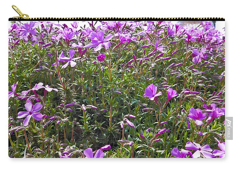 Phlox Carry-all Pouch featuring the photograph Puryple by Nick Kirby
