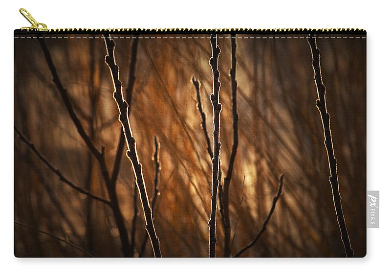 Art Carry-all Pouch featuring the photograph Pussy Willows In The Warm Sunlight by Randall Nyhof