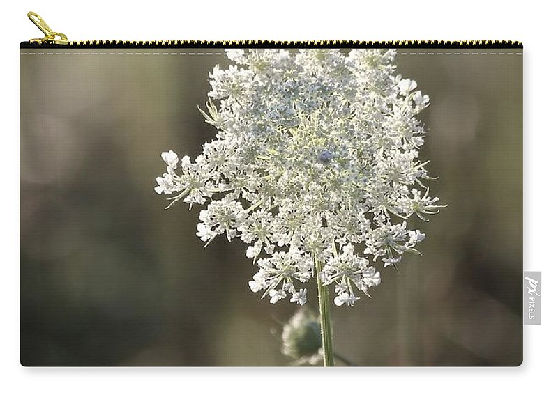 Queen Carry-all Pouch featuring the photograph Queen Annes Lace - 3 by Kenny Glotfelty