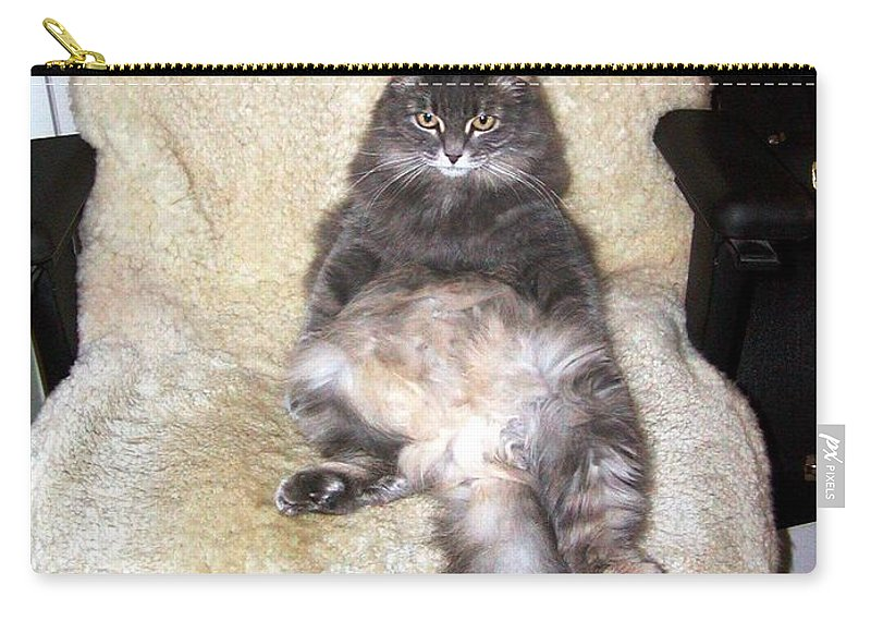 Cat Carry-all Pouch featuring the photograph Queenie As An Executive by Jussta Jussta