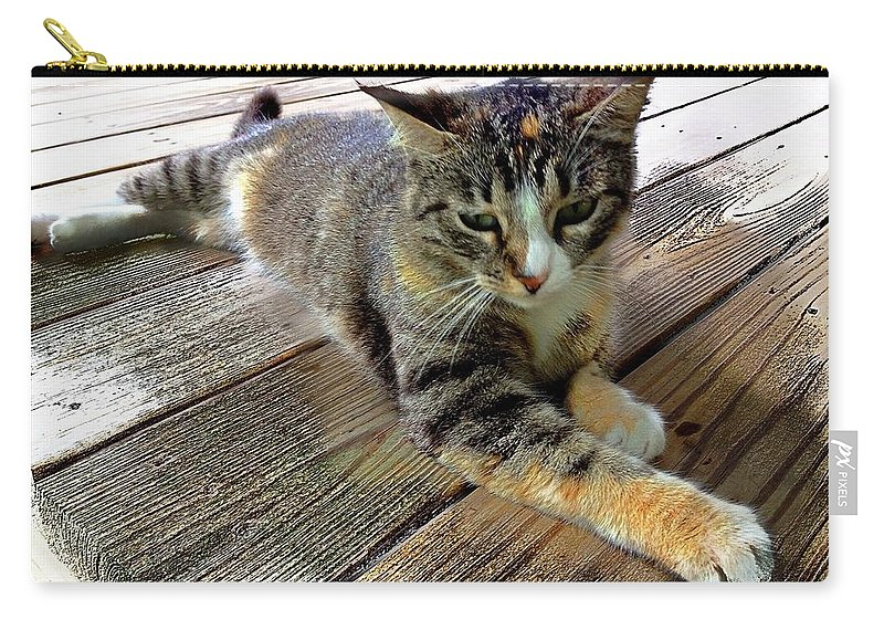 Calico Cat Carry-all Pouch featuring the photograph Queenie by John Duplantis