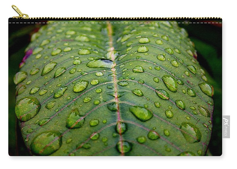 Leaf Carry-all Pouch featuring the photograph Quenched by David Weeks