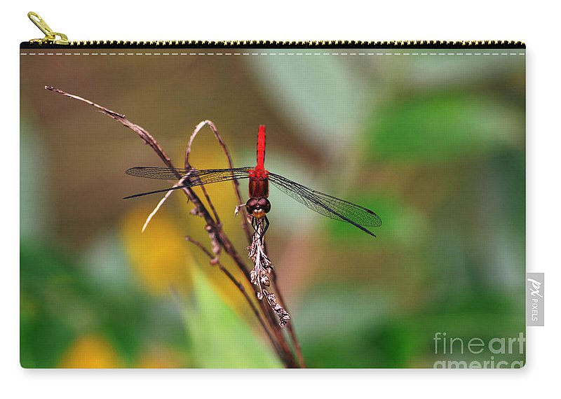 Wings Carry-all Pouch featuring the photograph Quick Stop... by Kevin Fortier